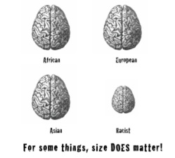 1-7 Anti-racist brain size poster v2