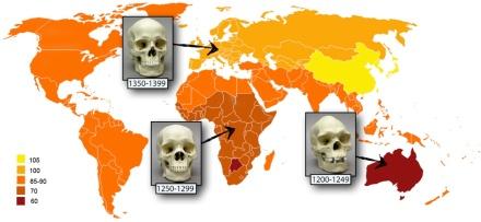 1-7 Indigenous IQs and skulls