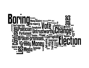 Politics word cloud, general population